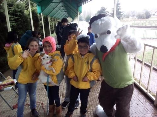Desparasitación y chipeo de mascotas en el colegio Alianza Austral